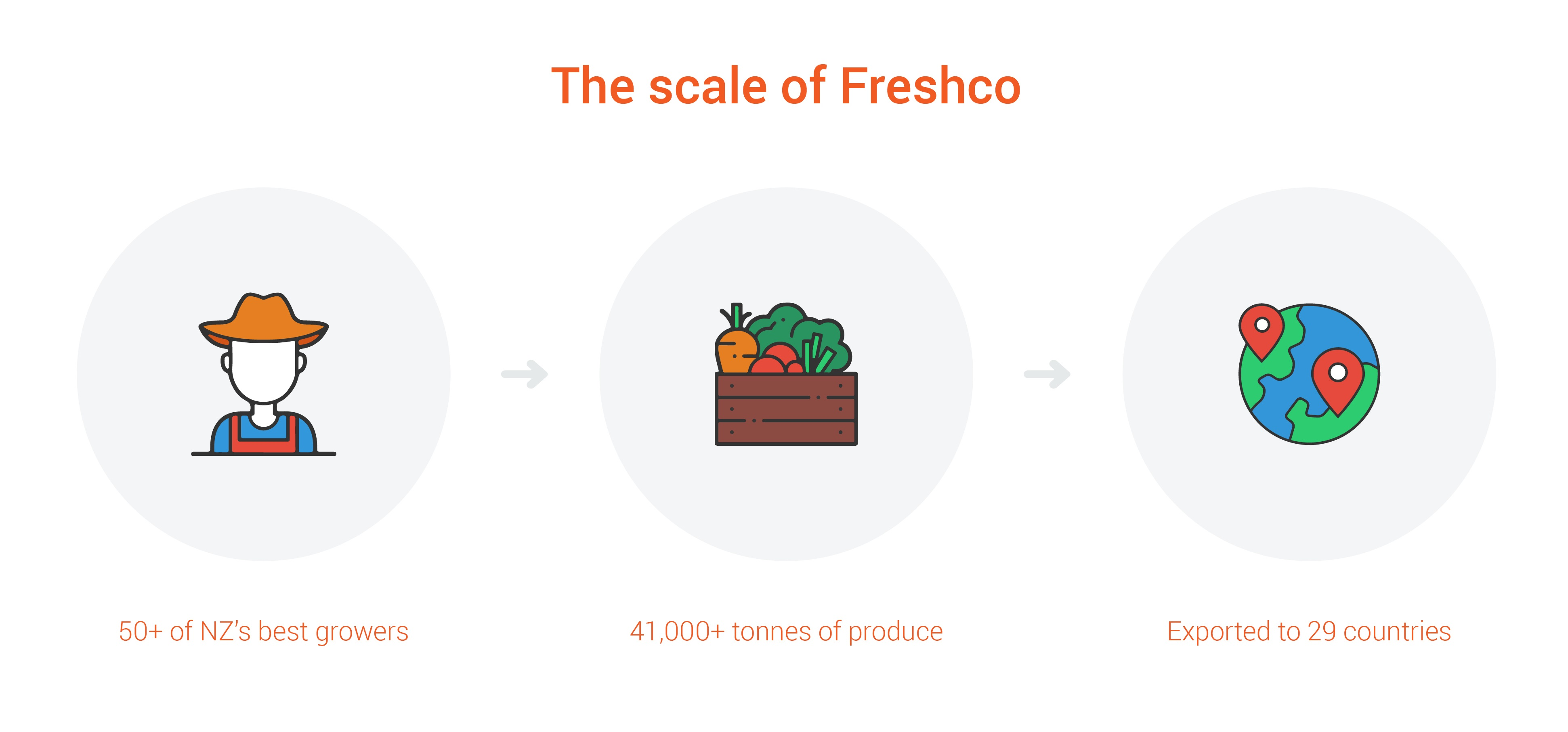 scale of Freshco infographic